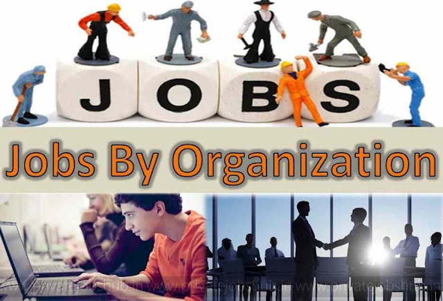 Jobs By Organization