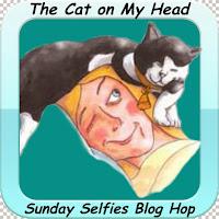 http://thecatonmyhead.com/sad-selfie-fiona/