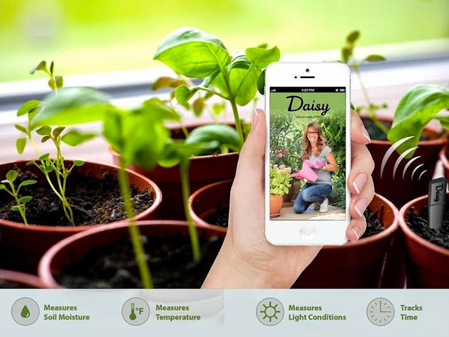 Smart and Innovative Gardening Gadgets (15) 10