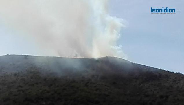 Πυρκαγιά στην Κυνουρία (βίντεο)