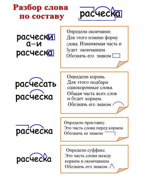 Фонетический разбор слова подберезовик