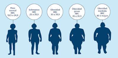 tratamiento de la obesidad en granada método pose y método apollo