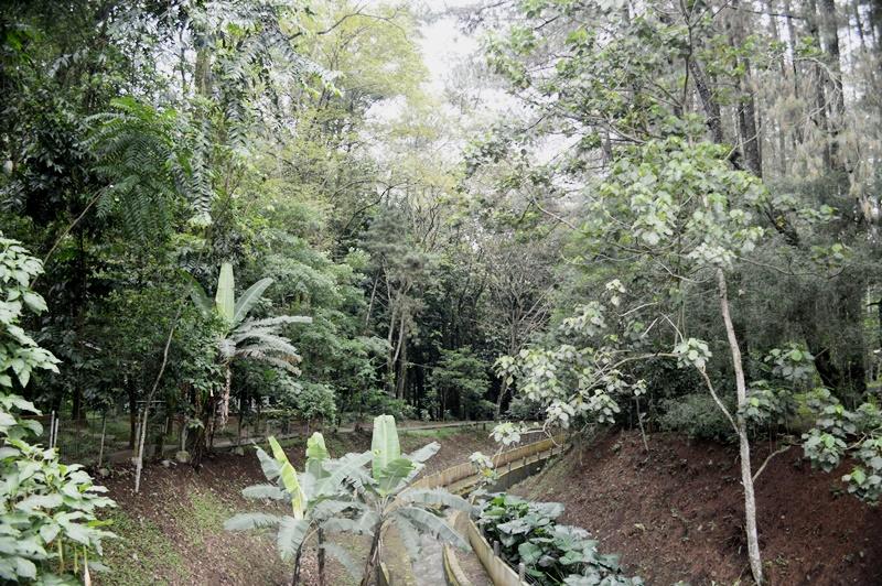 Image Result For Wisata Lembang