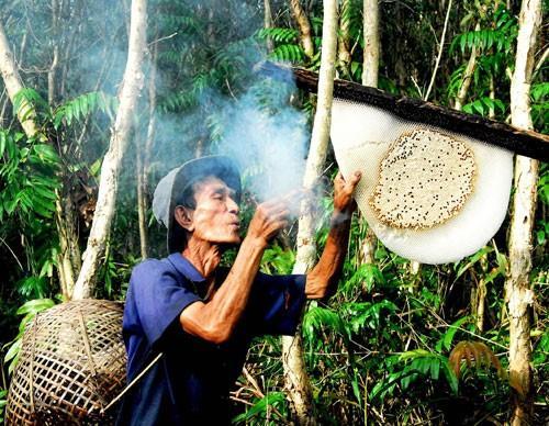 Cảnh lấy mật của người dân U Minh Hạ - Cà Mau