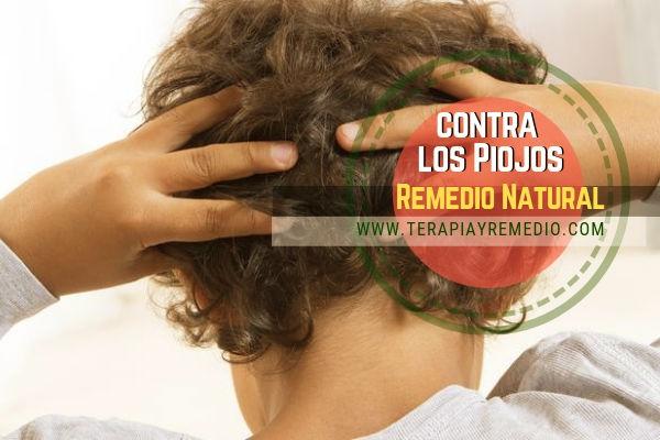 Contra los piojos remedio natural con anís verde además de ser un buen remedio contra los gases,