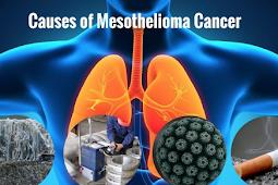 Mesothelioma Risk Factors