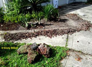 Rock-Scaping in Florida: Eine gute Idee oder nicht?