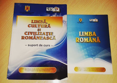 Romanians in Ireland school community dublin engleza scoli predare