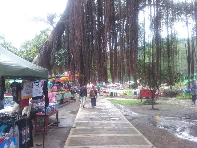 Akar Pohon ini Menambah Indah Suasana Lapak