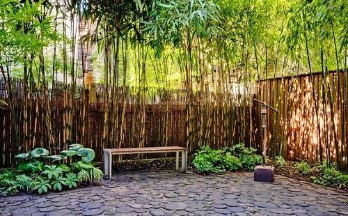 Contoh Desain Pagar Tanaman Bambu
