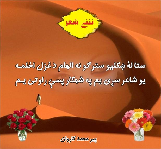 Pashto Adabi Panra