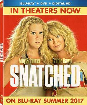 Snatched 2017 Dual Audio Hindi DD 5.1ch 720p BRRip 800Mb ESub x264