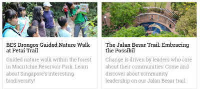 Source: Jane's Walk Singapore page. Snippet showing two walks.