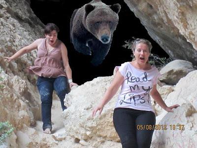 Despiertan a un oso pardo que hibernaba en la Cova de la Dona de Beceite