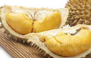 Manfaat Buah Durian