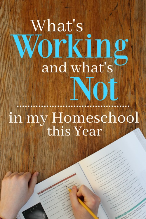 What's Working and What's Not in My Homeschool This Year