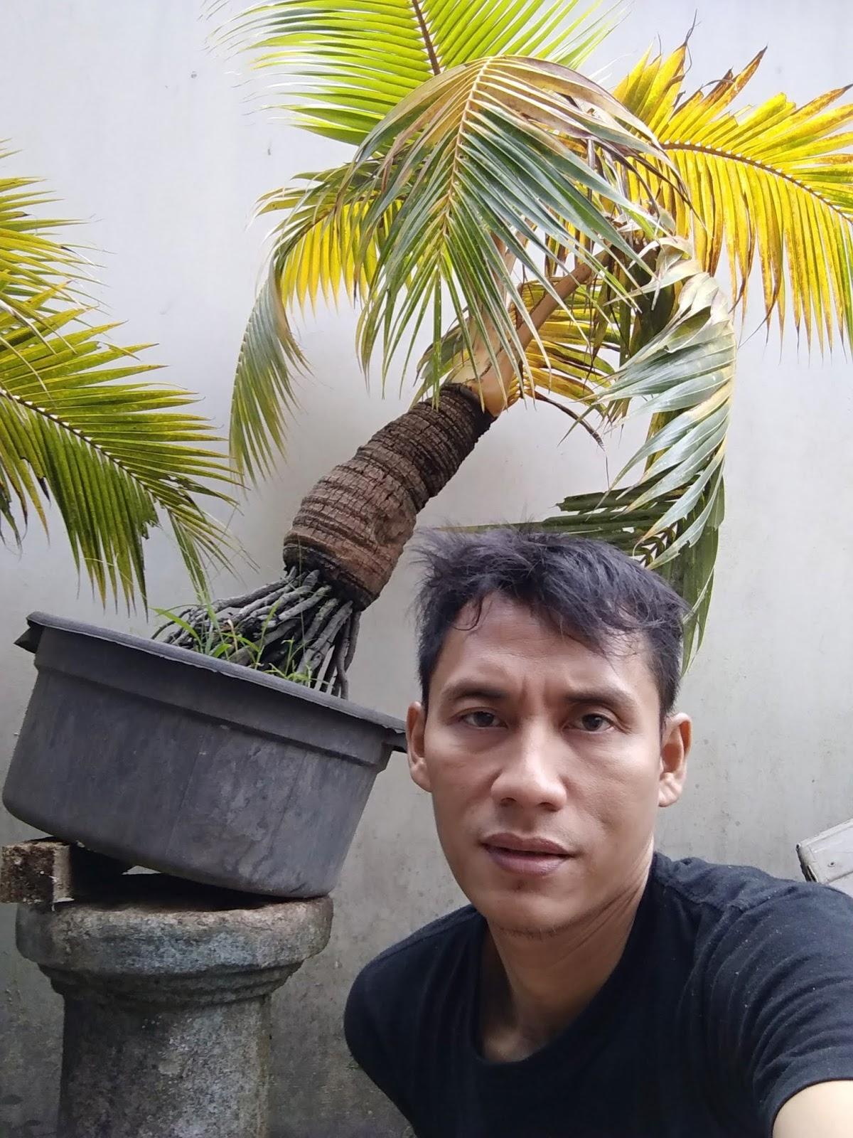 Komunitas Nakal Lahir Di Bandung Natakalapa