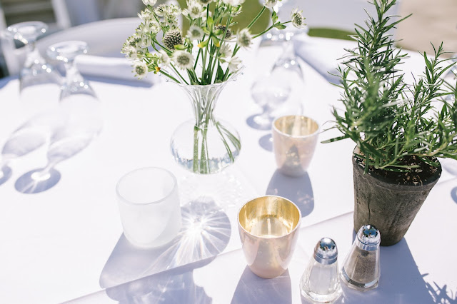 simple white blossoms in a bud vase and potted rosemary centerpiece for a classic white garden wedding in utah