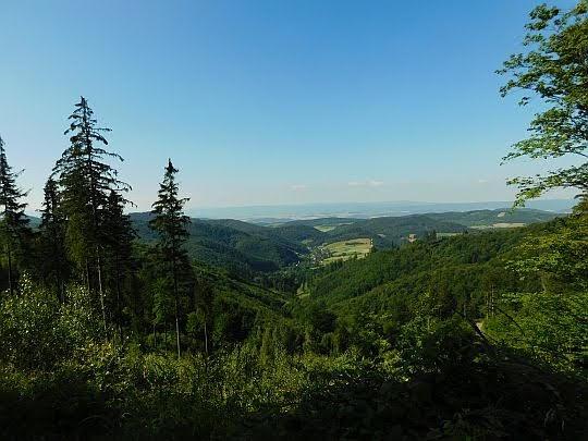 Widok na dolinę potoku Czerwionka.