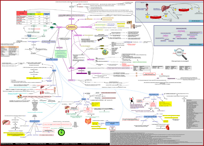 Dyslipidemia Concept Map Pathophysiology Etiology Treatment
