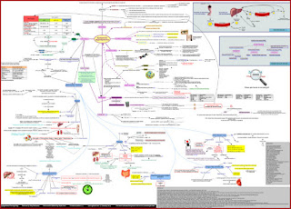 dyslipidemia_concept_map_zoom_out_pharmacotherapy