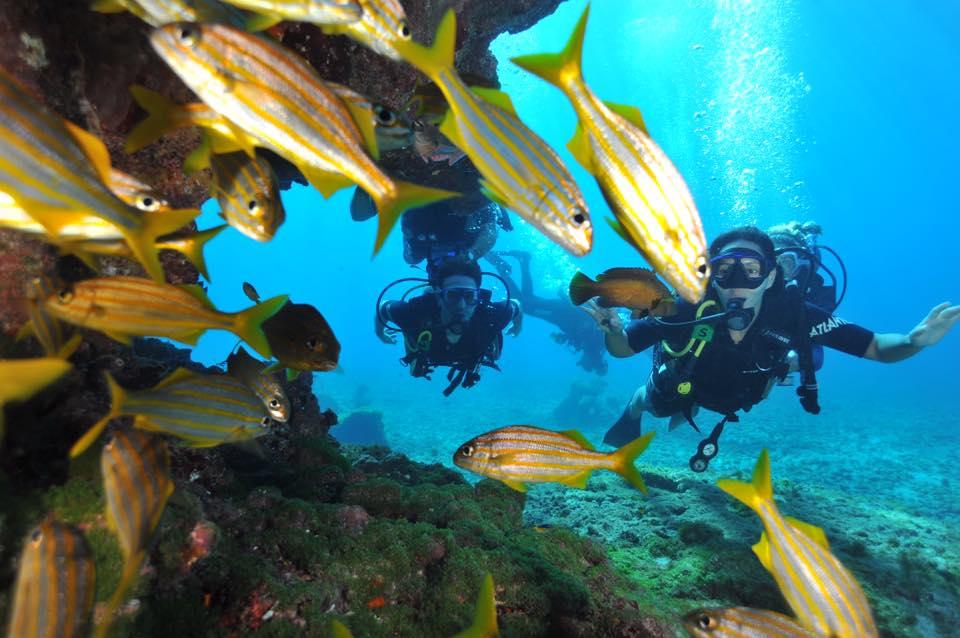 mergulho da Erika Lettry 1