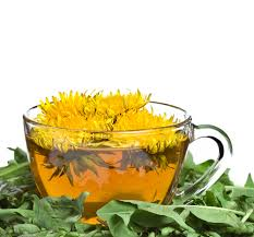 teh-dandelion