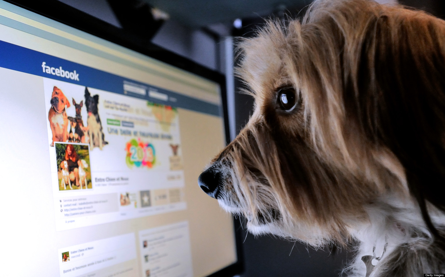 7 Sebab Main Facebook Tak Bagus Langsung