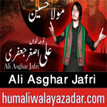 http://www.humaliwalayazadar.com/2016/10/ali-asghar-jafri-nohay-2017.html