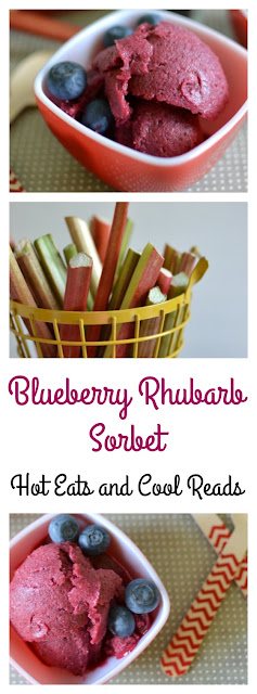 Amazingly delicious spring or summertime treat! Perfect for those hot days when you need to cool off! Or add to soda or wine for a delicious beverage! Blueberry Rhubarb Sorbet Recipe from Hot Eats and Cool Reads