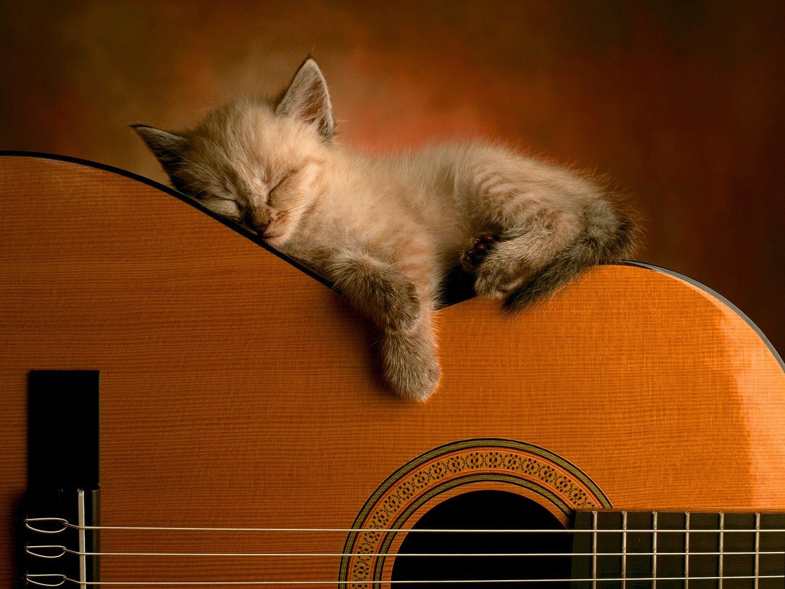 Love Wallpaper GambarGambar Gitar Keren