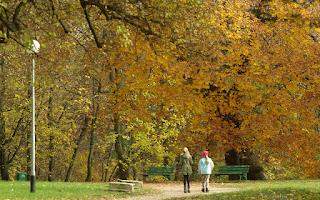 http://fotobabij.blogspot.com/2016/02/spacer-jesienny-park-zdjecie-4k-hd.html