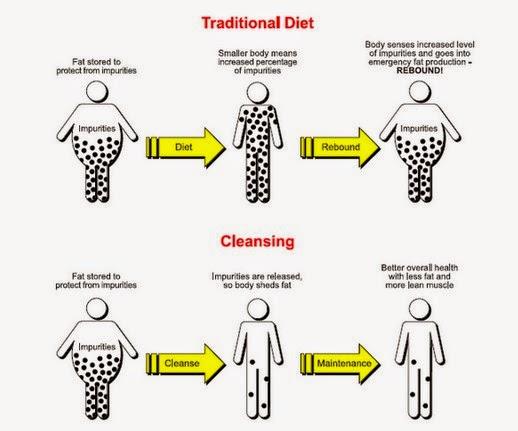 Tips Diet Sehat Langsing Alami. 10 FREE Diet Tips untuk Langsing Permanen!