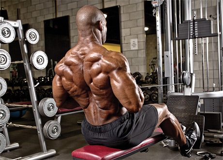 how to build lower lats