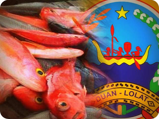 Harga ikan di Pasar Lama Kota Saumlaki, Kecamatan Tanimbar Selatan, Kabupaten Maluku Tenggara Barat (MTB), Provinsi Maluku mengalami kenaikan.
