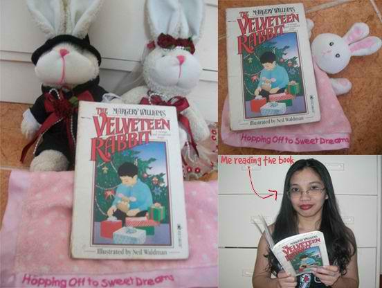 The Velveteen Rabbit Life Lessons
