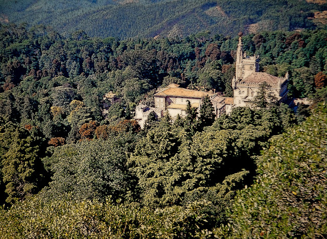 Mata do Buçaco, el bosque y el hotel Palace