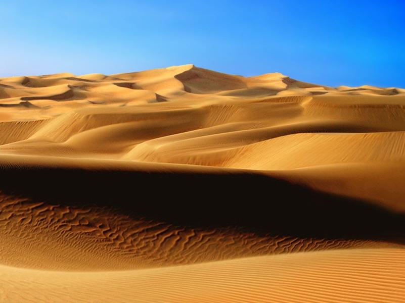 Desert Biome Population
