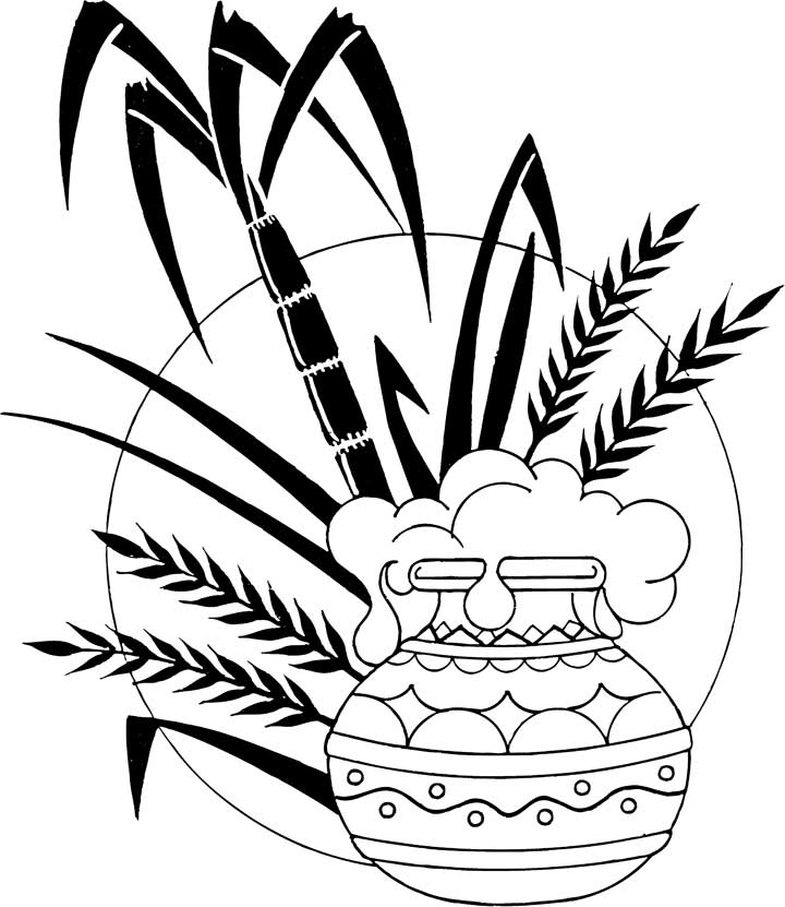 Clip arts and images of india pongal sankranthi and for Pongal coloring pages