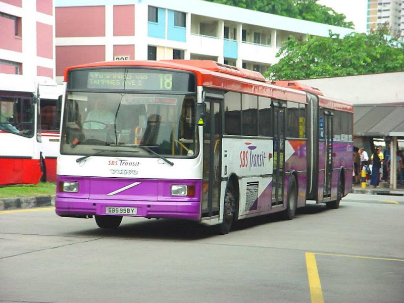 Bus Tour Nz South Island