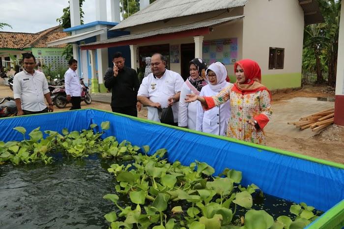 Desa Rawa Selapan Siap Dinilai wakili Lamsel Dalam Lomba Desa Tingkat Provinsi.