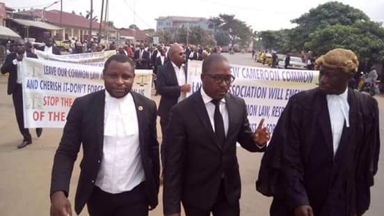 Image result for photos of fako lawyers association