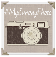 The My Sunday Photo linky badge.