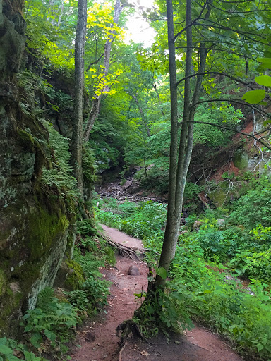 Parfrey's Glen State Natural Area in Merrimac WI