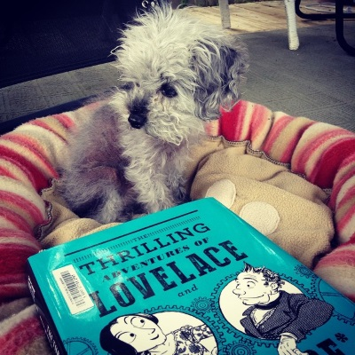 Murchie sits in his dog bed, his head turned to regard something outside the left side of the frame. Before him sits a hardcover copy of The Thrilling Adventures of Lovelace and Babbage. Its turquoise cover features black and white line drawings of the two main characters emerging from gear-shaped holes. They smile at one another.