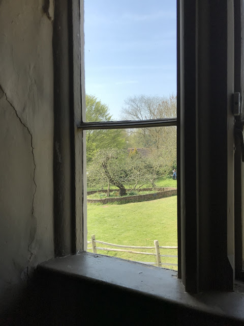 Interior of a window with a view of an apple tree