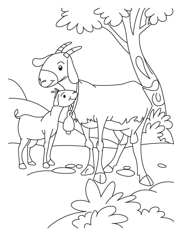 Pictures Of Animals Coloring Kids: Goat The Farm Animal
