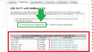 Installing Netbeans (Lesson 1)