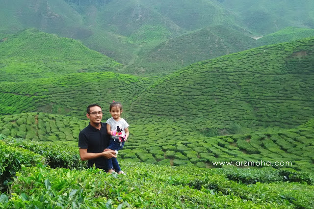 ladang teh, cameron highlands, beautiful place in malaysia, father and daughter, pahang, lokasi menarik di cameron highlands,
