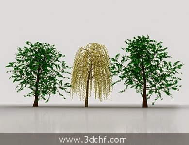 trees 3ds max model